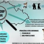 HAF CUP 2014 plakát